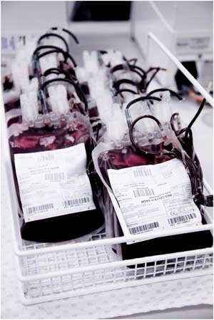 Blood samples taken by the Red Cross Blood Service. Many patients in Australian hospitals rely on donations for survival.